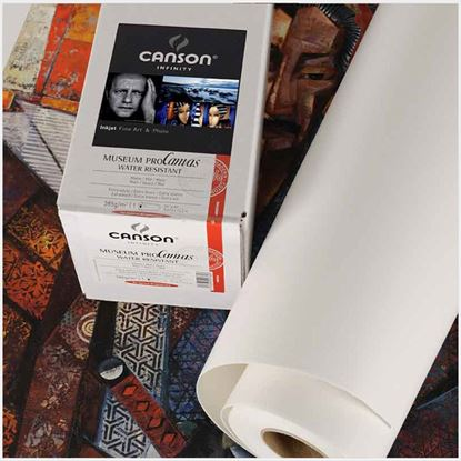 Picture of Museum Pro Canvas 385- Matte Finish